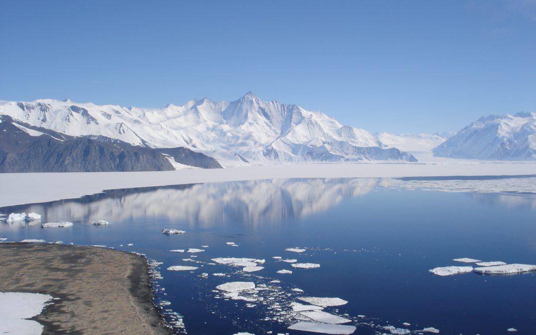 Adventures in Antarctica